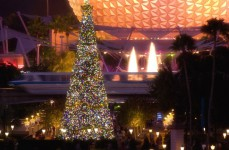 Epcot-Christmas tree