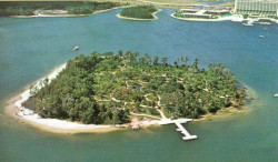 Discovery Island at Walt Disney World 1974