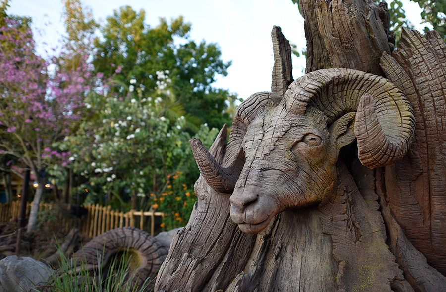 Tree of Life Disney's Animal Kingdom Animal Carvings