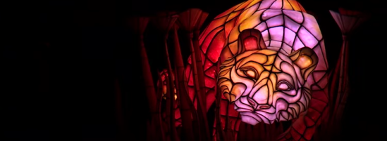 "Behind-the-Scenes Look at Animal Kingdom's ""Rivers of Light"""